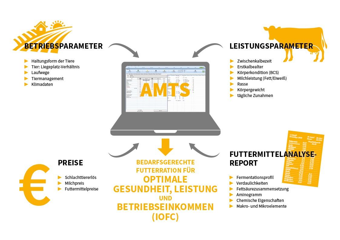 Anhand einer Grafik wird AMTS erklärt.