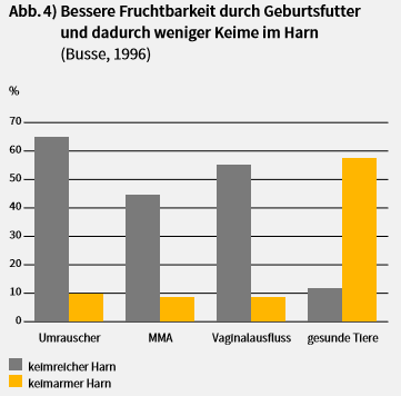 Abbildung Geburtsfutter und bessere Fruchtbarkeit von Sauen in der Geburtsvorbereitung