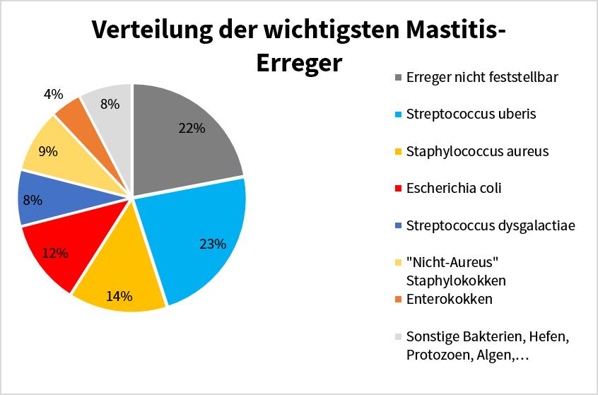 Kreisdiagramm über Verteilung der wichtigsten Mastitis-Erreger - Sano