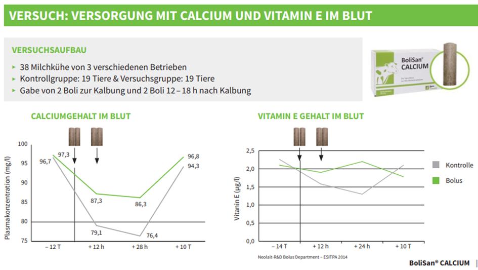 Grafik zur Veranschaulichung des Versuchs von BoliSan Calcium Einsatz bei Rindern