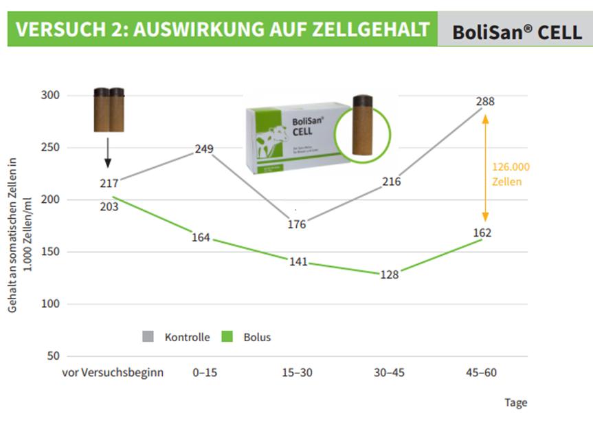 Grafik zur Veranschaulichung des Einsatzes von Boli bei Rindern. BoliSan Cell von Sano Veterinär und Auswirkung auf den Zellgehalt.