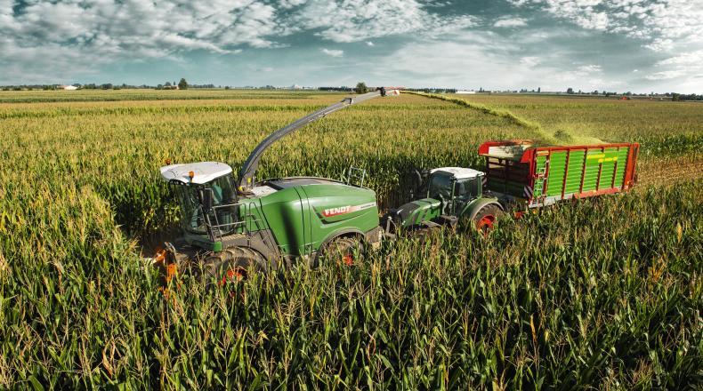 Maisernte auf dem Feld - Maissilage Tipps & Tricks Sano