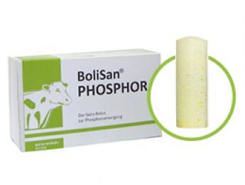 phosphor_Bolus mit Phosphor.jpg