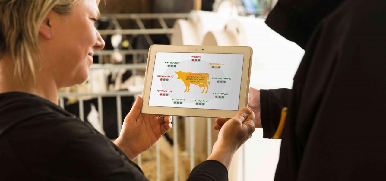 Landwirtin mit Fütterungsberater über Tablet beim Sichten von SmartDairyNutrition
