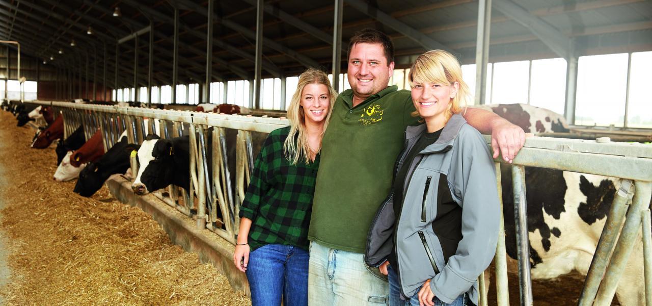 Drei Personen befinden sich im Kuhstall und schauen in die Kamera. Im Hintergrund befinden sich Kühe.