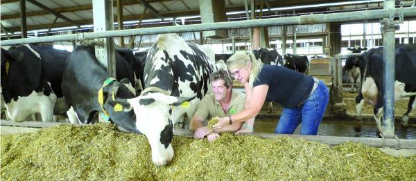 Betriebsreportage Beerendorf - Sano | Hohe Milchleistung bei Landwirten