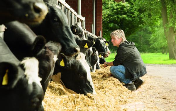 Herdenmanagement lohnt sich