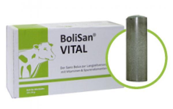 vital_Bolus für Weiderinder.jpg