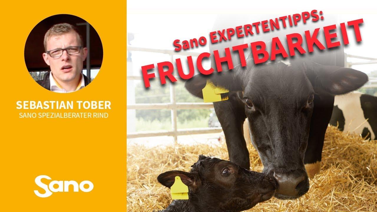 YouTube Vorschaubild für Sano Expertentipps: FRUCHTBARKEIT