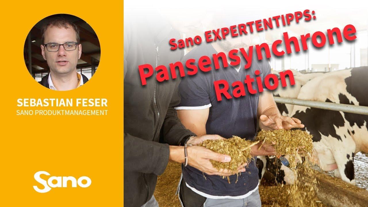 YouTube Vorschaubild für Sano Expertentipps - PANSENSYNCHRONE RATION
